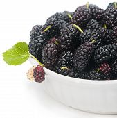 White Bowl With Black Mulberries