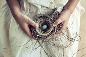 pic of bird-nest  - Vintage toned closeup of girl - JPG