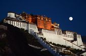 the Potala Palace night scene