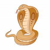 picture of king cobra  - Vector image of a smiling cartoon Kobra - JPG