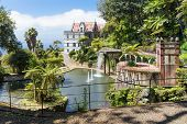 pic of ponds  - Tropical garden with pond and palace at Funchal Madeira island Portugal - JPG