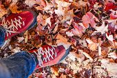 Red shoes standing in many fallen maple leaves from above with copy space
