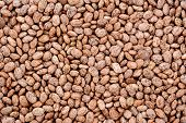 stock photo of pinto  - Pinto beans as an abstract background texture - JPG