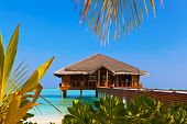 Spa on Tropical Maldives island - nature travel background