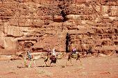 Wadi Rum Camel Safari, Jordan.
