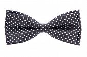 Black Bow Tie With Polka Dots Isolated On White Background