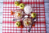 Oatmeal in bowls, yogurt and apples on checkered fabric background