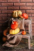 Pumpkins on wooden ladder on floor on brick wall background