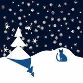 Blue cat in winter night when snowing