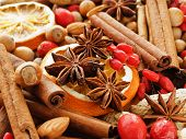 pic of christmas spices  - Christmas background made of nuts dried oranges and spices - JPG