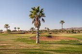 Golf Course In Morocco