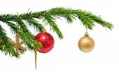 christmas holiday toys on fir tree twig over white background