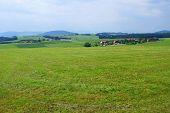Bavarian summer landscape