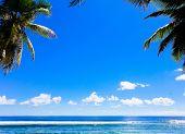 Paradise Frame Overhanging