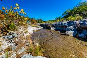 stock photo of crystal clear  - Fall Foliage On A Crystal Clear Creek In The Hill Country Of Texas, with Deep Blue Skies.