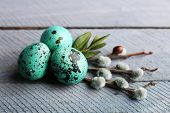 stock photo of pussy-willows  - Bird colorful eggs in nest and pussy willow branches on wooden background - JPG