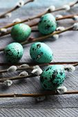 pic of pussy-willows  - Bird colorful eggs in nest and pussy willow branches on wooden background - JPG