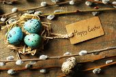 picture of pussy  - Bird eggs in nest and pussy willow flowers branches on wooden background - JPG