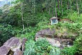 pic of altar  - The altar of the Buddha on the rock - JPG
