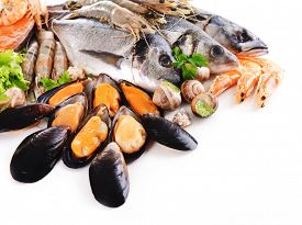 pic of shell-fishes  - Fresh fish and other seafood isolated on white - JPG