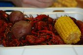 picture of crawfish  - Traditional Gulf Coast fair from Texas to  Florida - JPG