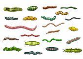 stock photo of crawl  - Cartoonl crawling and wriggling caterpillars and worms with stripes - JPG
