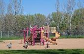 Pink Playground