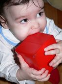 Baby Girl Gnawing A Playing Brick