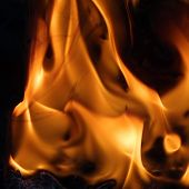 Flames of fire, close-up