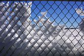 Snowy fence, blue sky behind.