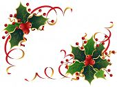 stock photo of holly  - Christmas Holly - JPG