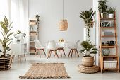 Rug And Plants In Natural Bright Dining Room Interior With White Chairs And Table Under Lamp. Real P poster