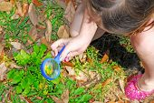 young girl exploring in yard using magnifying glass