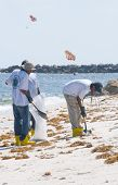 ORANGE BEACH, AL - JUNE 10: BP oil spill workers attempt to remove oil from the seashore of Perdido