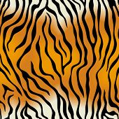 Seamless tiger skin