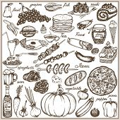 picture of marrow  - Set doodle food - JPG
