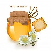 Jar with a vector illustration of honey and flowers