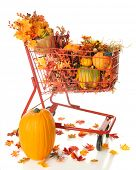 A red shopping basket filled with pumpkins and colorful fall foliage.  On a white background. poster