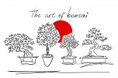 calligraphic sketches of bonsai trees, vector