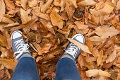 Woman Standing In Dry Autumn Leaves poster