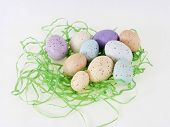 Pastel Eggs On Grass