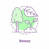 Botany Concept Icon. Science Idea Thin Line Illustration. Plant Biology. Birch Tree, Leaf, Sprout. V poster