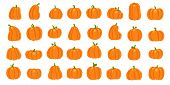 Cartoon Orange Pumpkin. Halloween October Holiday Decorative Pumpkins. Yellow Gourd, Healthy Squash  poster