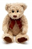 foto of teddy-bear  - teddy bear - JPG