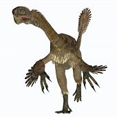 Citipati Female Dinosaur On White 3d Illustration - Citipati Was A Carnivorous Velociraptor Dinosaur poster