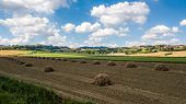 Panorama Of The Countryside In Coriano, Emilia Romagna Countryside, Italy poster