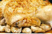 Roasted Chicken And Garlic