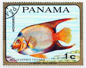 PANAMA - CIRCA 1978: A stamp printed in Panama shows tropical reef fish Holacanthus Ciliaris, circa