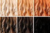 Set of hair colors, different tints
