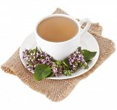foto of origanum majorana  - Herbal  tea with fresh fragrant herbs isolated on white background - JPG
